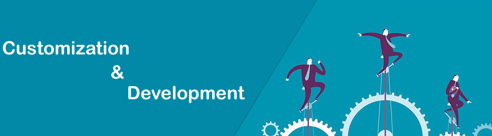 Software Customization & Development in Delhi NCR